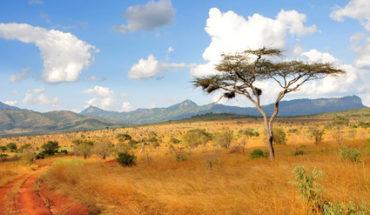 Inhalt des Artikels ist eine Reise nach Namibia.
