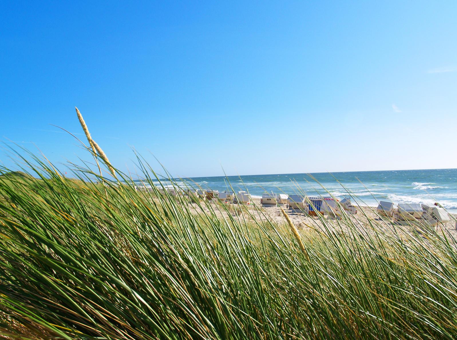 Der Artikel hebt den positiven Effekt des Reizklimas der Nord- und Ostsee in Bezug auf Hautkrankheiten hervor.